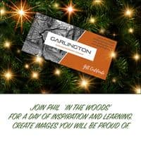 Woodland Photography Workshop Gift Certificate